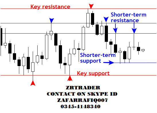 Daily Live Forex Signals and Trading Updates in Pakistan